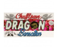 Dragon Sensation - ChuffTown CPH